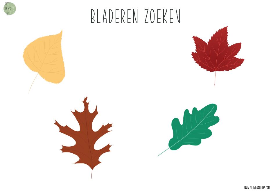 bladeren sorteren op kleur